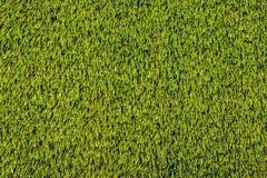 Искусственная текстура травы для предпосылки Стоковые Фото
