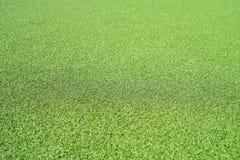 Искусственная текстура травы стоковая фотография rf