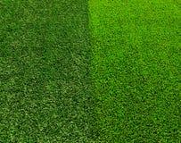 искусственная трава предпосылки Стоковые Изображения