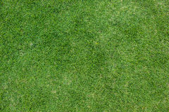 искусственная трава предпосылки Стоковые Фото