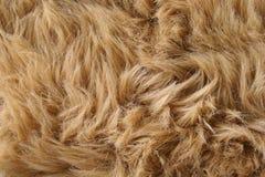 искусственная шерсть Стоковая Фотография RF