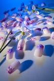 искусственние ногти стоковые фото