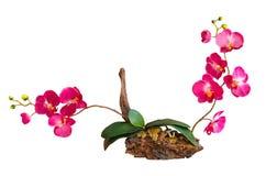 Искусственние изолированные цветки Стоковая Фотография