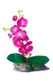 Искусственние изолированные цветки Стоковые Изображения