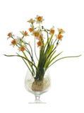 Искусственний букет daffodils в стекле Стоковое Фото