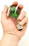 искусственний вал света удерживания руки шарика Стоковое Фото