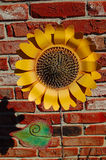 искусственний солнцецвет Стоковые Изображения RF