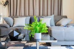 Искусственное дерево в белом баке на таблице софы с много подушек Стоковые Изображения