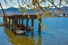 искусственное озеро времени tirana весной стоковое изображение rf