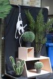Искусственные кактус и папоротник около магазина на рынке Spitalfields около метро улицы Ливерпуля Стоковые Изображения