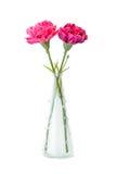 Искусственные розовые и фиолетовые гвоздики в вазе на белом backgroun Стоковая Фотография RF