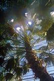 Искусственные солнца Стоковые Фото