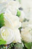 Искусственные цветки белой розы красивые как первоклассная вещь Стоковые Изображения RF