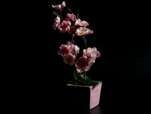 Искусственные цветки на черной предпосылке Стоковые Фотографии RF