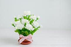 Искусственный букет цветка жасмина с розовым смычком ленты Стоковое Изображение RF
