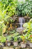 Искусственный водопад в саде бабочки Стоковые Изображения RF