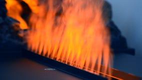 Искусственный накалять electrofireplace освещает конец-вверх контржурным светом акции видеоматериалы