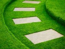 Искусственный путь прогулки зеленой травы с конкретной плитой Стоковое Изображение