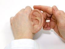 Искусственный силикон сделал человеческое ухо Стоковое фото RF