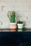 Искусственный цветок в баке Стоковая Фотография