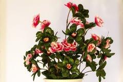 Искусственный цветок на белой предпосылке стоковое изображение rf