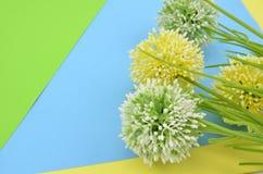 4 искусственных зеленых и желтых цветка на сини, и предпосылке желтого цвета Стоковые Изображения RF
