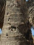 Искусство ладони стоковое изображение