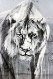 Искусство граффити льва, Лондон стоковое изображение rf