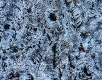 Искусство дерева Стоковое фото RF