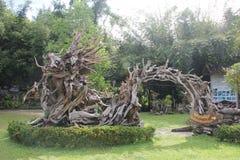 Искусство крупного плана корня таро thep, Huai Yod, Trang, Таиланда Стоковые Изображения RF