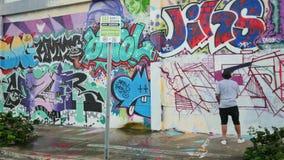 Искусство на wynwood Майами FL сток-видео