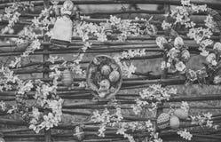Искусство пасхи, украшение, floristry, дизайн Стоковое фото RF