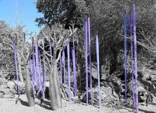 Искусство природы в сини Стоковая Фотография
