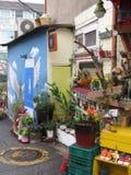 Искусство Сеул Корея улицы деревни настенной росписи Ihwa стоковые изображения