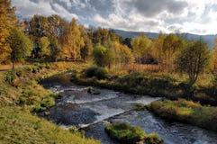 искусство создало фотограф покрашенный природой крася Стоковая Фотография
