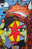 Искусство стены граффити Fox и стороны абстрактное стоковое изображение