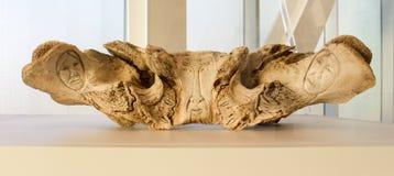 Искусство Эскимос стоковое изображение