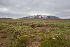 Исландский пейзаж ландшафта природы около Hvitarnes Стоковое Изображение RF