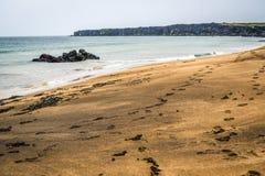 Исландский пляж с песочными побережьем и утесами Стоковое Изображение RF