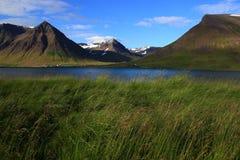 Исландский фьорд в июле Стоковые Изображения RF