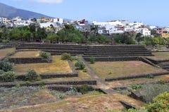 Испания, Канарские острова, Тенерифе Стоковое Изображение