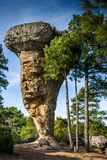 Испания, Ла Mancha Castille, провинция Cuenca, Serrano de Cuenca, c Стоковое Фото