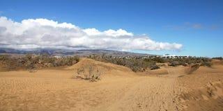 Испания. Остров Gran Canaria. Дюны Maspalomas Стоковые Фото