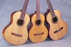 Испанская классическая гитара Стоковые Фото
