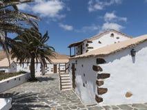 Испанские пальмы усадьбы Стоковая Фотография RF