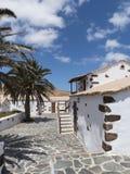 Испанские пальмы усадьбы Стоковые Фото