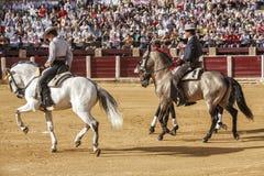 Испанские bullfighters верхом на paseillo или начальном параде в Ubeda Стоковое Изображение RF