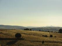 Испанский ландшафт полей Стоковая Фотография RF