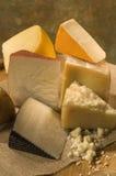испанский язык козочки сыра Стоковая Фотография RF