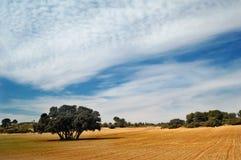 испанский язык ландшафта Стоковая Фотография